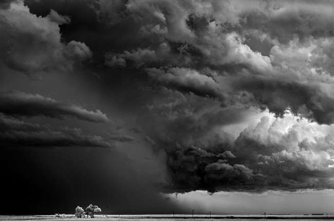 Mitch Dobrowner - TreesAndClouds